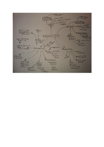 Preview of Longitudinal study minmap