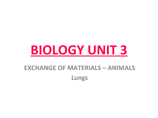 Preview of Lungs