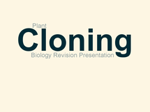 Preview of Micropropagation/Plant Cloning Revision Presentation Slides - WJEC BY5 Use of Genetics