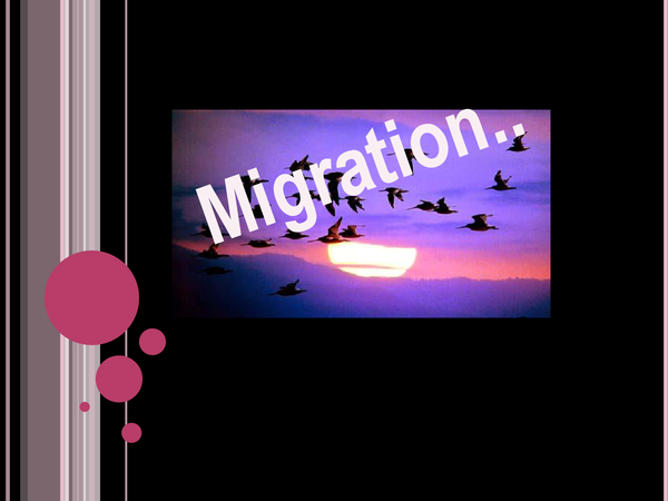 Preview of Migration