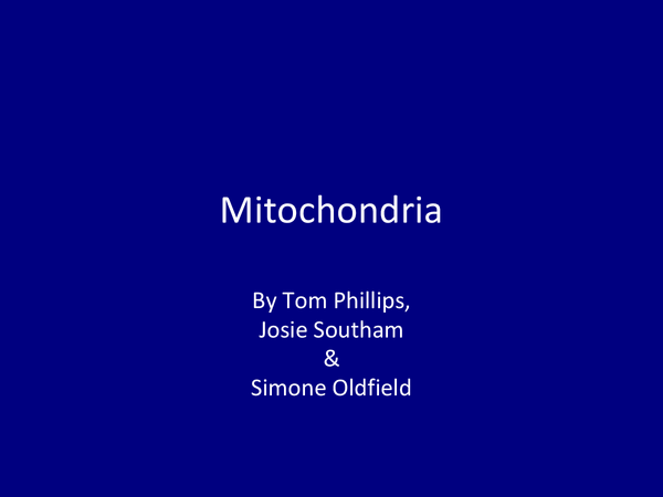 Preview of Mitchondria Powerpoint