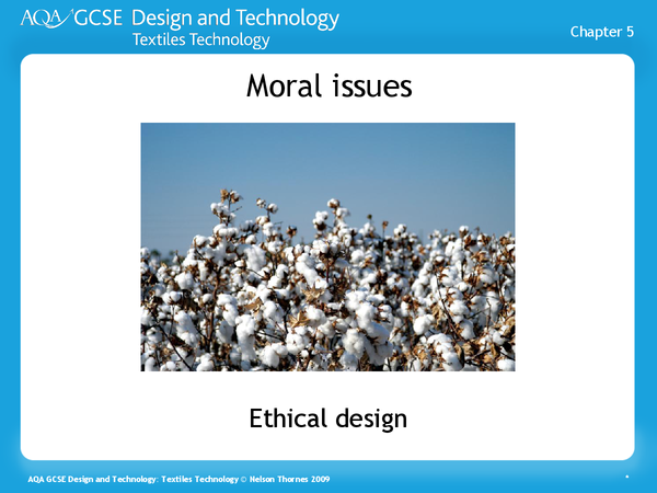 Preview of MORAL ISSUES. I found this extremely useful in the moral issues department.