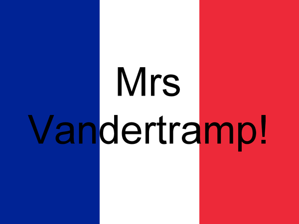 Preview of Mrs Vandertramp powerpoint on past tenses ( French)
