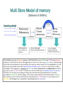 Preview of MSM of memory
