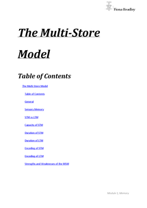 Preview of Multi-Store Model