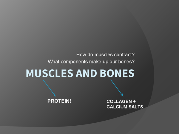 Preview of Muscles and Bones