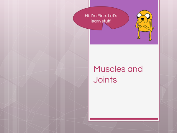 Preview of Muscles and Joints