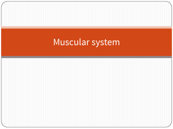 Preview of Muscular System