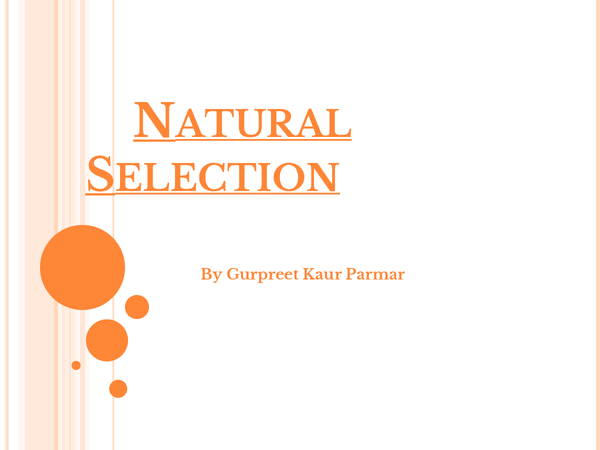 Preview of Natural Selection