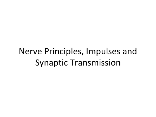 Preview of Nerves and Synaptic Transmission