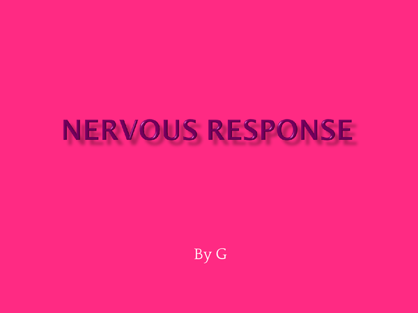 Preview of Nervous Response