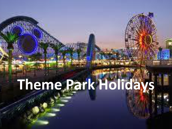Preview of Niche Markets - Theme Park Holidays