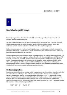 Preview of notes and questions on metabolic pathways