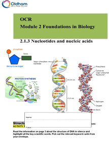 Preview of Nucleotides