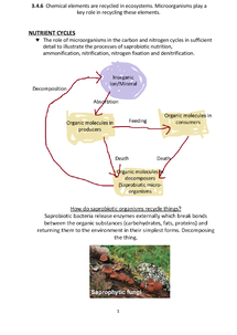 Preview of 3.4.6 Nutrient Cycles (AQA A2 Biology)