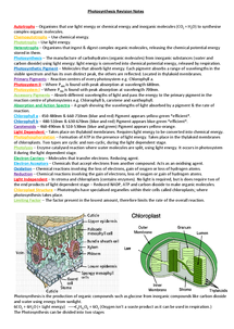 Preview of OCR A2 Biology F214 - Photosynthesis