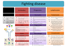 Preview of OCR AS Biology (F212) Fighting disease-health and disease