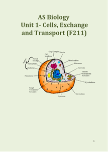 Preview of OCR Biology Unit 1