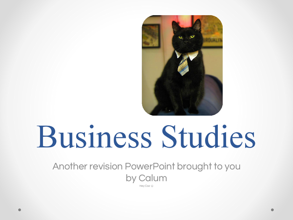 Preview of OCR Business Studies Powerpoint - Covers everything you need for both Exams