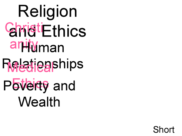 Preview of OCR Christianity GCSE: Human Relationships, Medical Ethics and Poverty and Wealth Revision PowerPoint