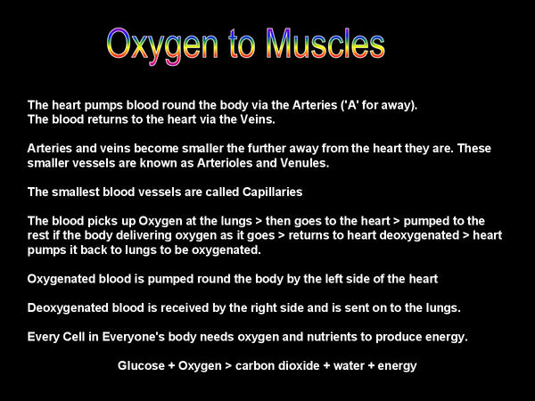 Preview of OCR- Circulatory and Respiratory systems
