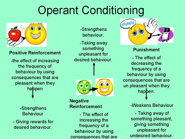 Preview of Operant Conditioning