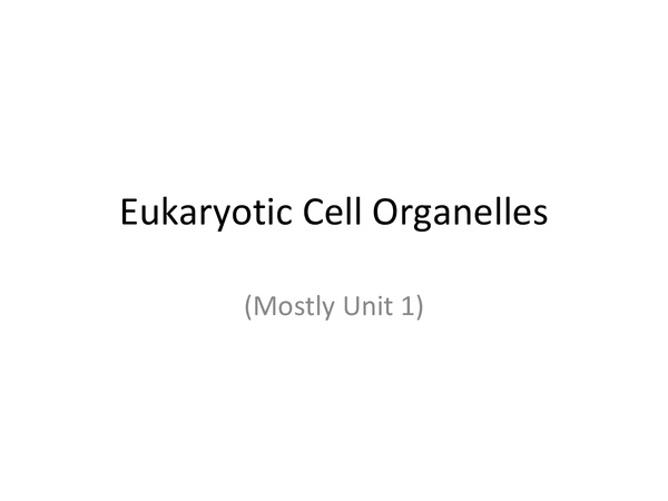 Preview of Organelles Summary