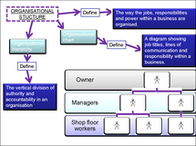 Preview of organisational structure