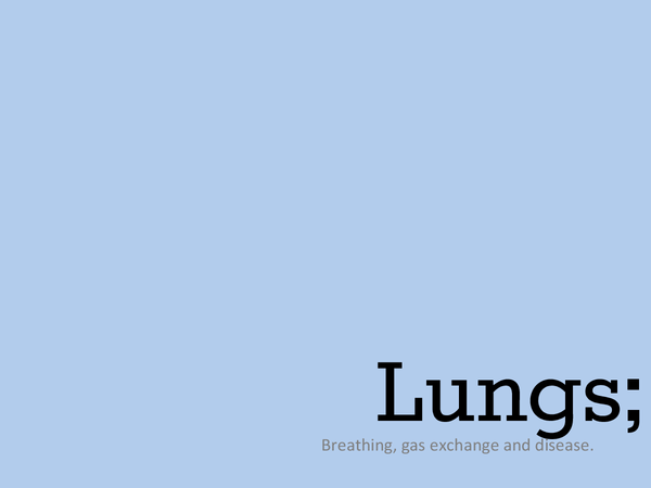 Preview of Overview of Lungs and Heart.
