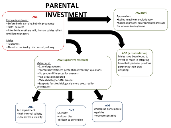 Preview of Parental investment and parent offspring conflict revision sheet