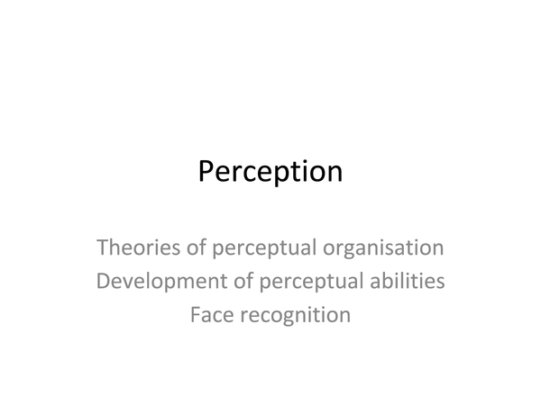 Preview of Perception complete revision slides