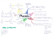 Preview of Phenols mind map