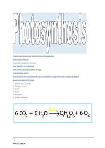 Preview of PHOTOSYNETHIS