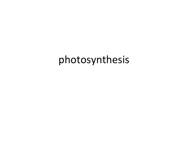 Preview of photosynthesis