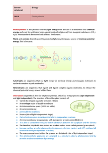 Preview of Photosynthesis (OCR)