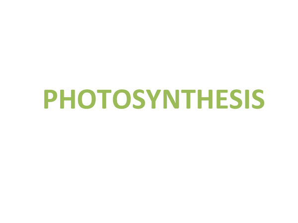 Preview of Photosynthesis (Unit 1 Module 3 OCR)