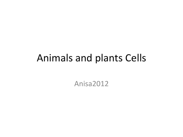 Preview of Plant and Animal cells