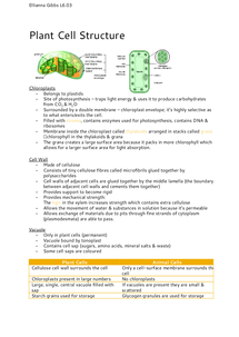 Preview of Plant Cell Structure