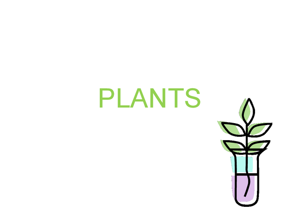 Preview of Plants