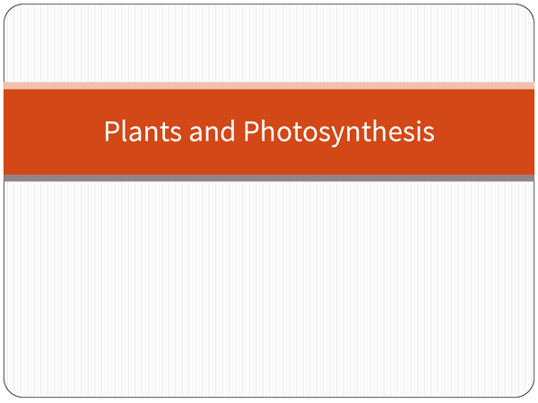 Preview of Plants and photosynthesis