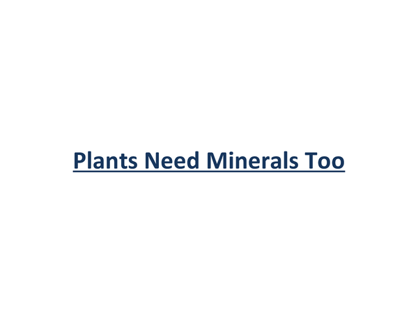 Preview of Plants Need Minerals Too