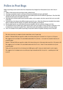 Preview of Pollen in Peat Bogs