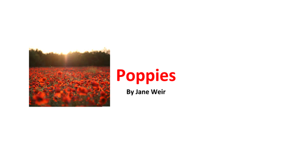 Preview of Poppies Analysis