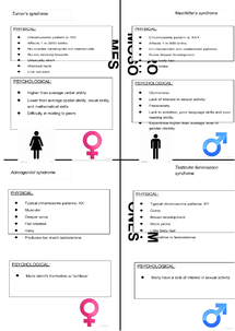 Preview of Poster for syndromes-biological explanation of gender