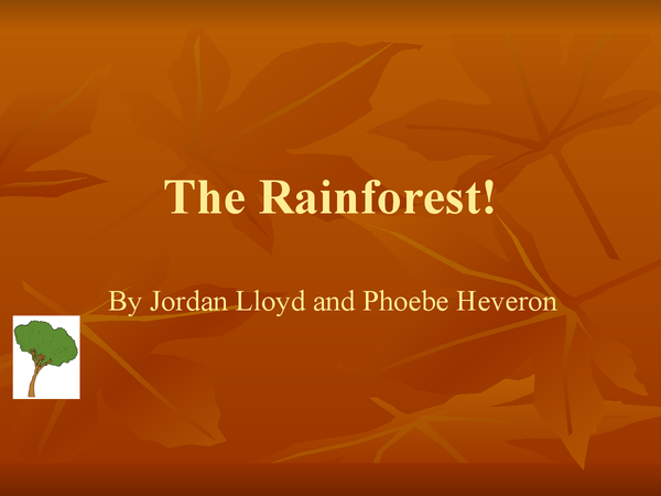 Preview of Powerpoint about the rainforest,
