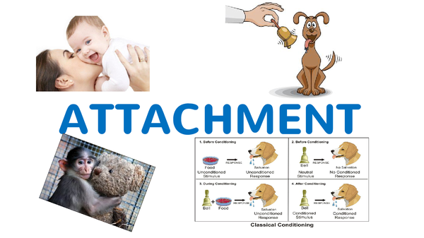 Preview of Attachment Psychology