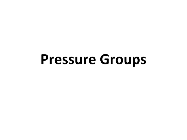 Preview of Pressure Groups