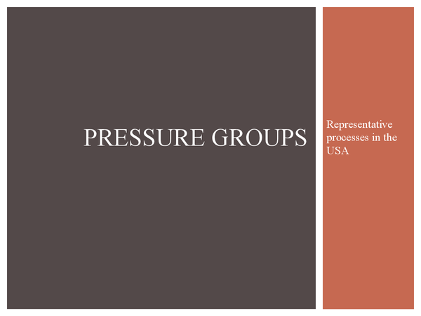 Preview of Pressure groups - Representative processes in the USA