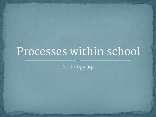 Preview of processes within the school