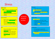Preview of Psychology aqa a unit 2 -  Stress